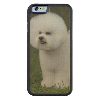 Bichon Frise Dog Carved® Maple iPhone 6 Bumper