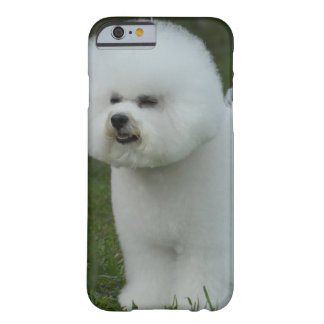Bichon Frise Dog Barely There iPhone 6 Case
