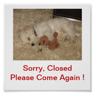 Bichon Frise Dog Closed For Business Sign Poster
