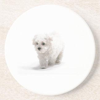 Bichon Frise Dog Coaster