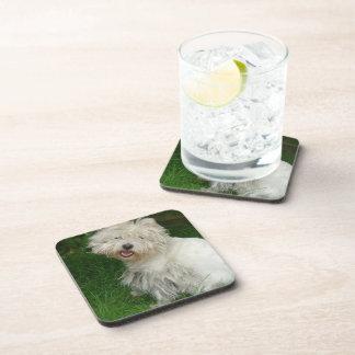 Bichon Frise Dog Cork Coasters