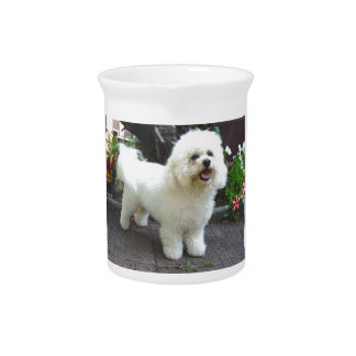 Bichon Frisé Dog Drink Pitcher