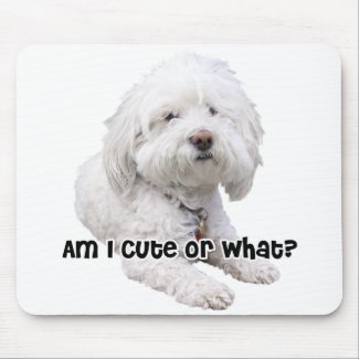 Bichon Frise Dog Mouse Pad