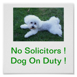 Bichon Frise Dog No Solicitors Sign Poster