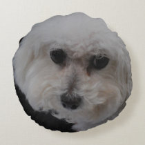 Bichon Frise Dog Round Pillow