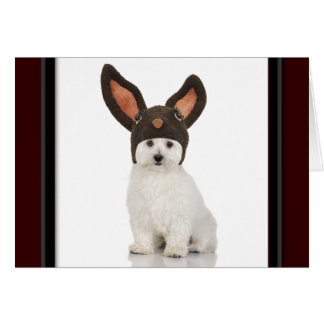 Bichon Frise Doggy With Bunny Hat Card