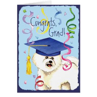 Bichon Frise Graduate Card