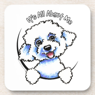 Bichon Frise Its All About Me Coaster
