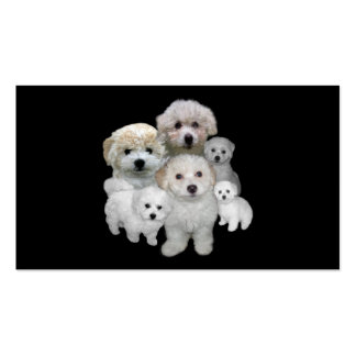 Bichon Frise Lover Business Card