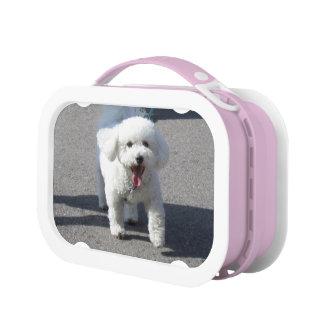 Bichon Frise Lunchbox