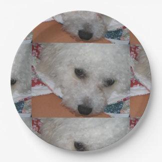 Bichon Frisé.png Paper Plate