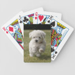 Bichon Frise Puppy Dog Playing Cards