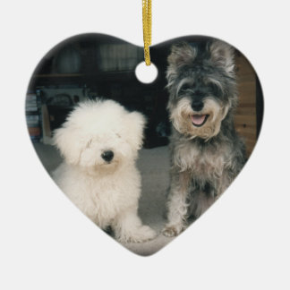 Bichon Frise Puppy & Miniature Schnauzer Ornament
