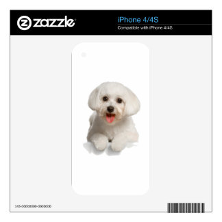 Bichon Frise Puppy iPhone 4S Decal