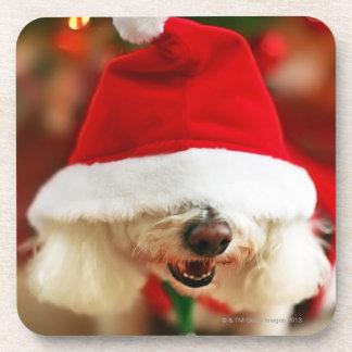 Bichon Frise puppy wearing Santa costume Beverage Coaster