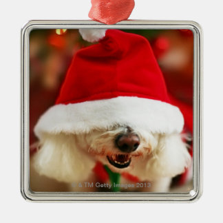 Bichon Frise puppy wearing Santa costume Christmas Ornament
