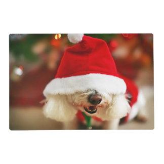 Bichon Frise puppy wearing Santa costume Placemat