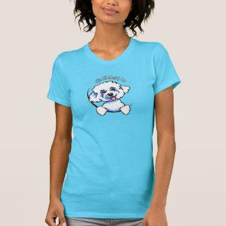 Bichon Frise su todo alrededor yo Camisetas
