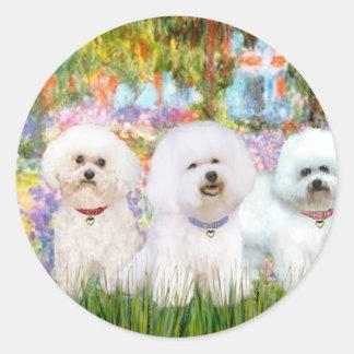 Bichon Frise Trio - Garden (VG) Stickers