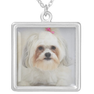 bichon frise with a pink bow in it's hair silver plated necklace