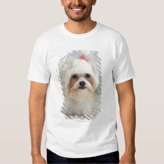 bichon frise with a pink bow in it's hair t shirt