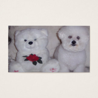 Bichon Frise with white teddy bear. Business Card