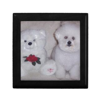 Bichon frise with white teddy bear. jewelry box