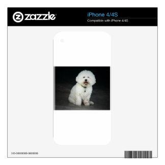 Bichon iPhone 4S Decals
