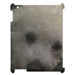 Case Savvy Glossy Finish iPad Case with Bichon Frise Phone Cases design