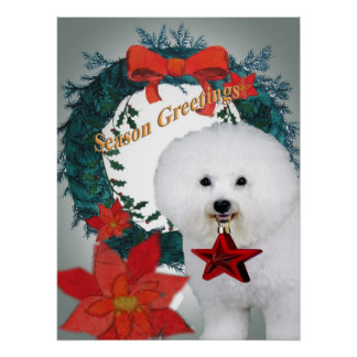 Bichon Season Greetings Art Poster