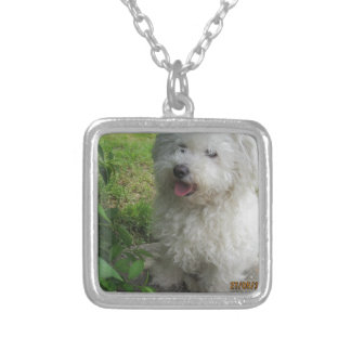 BICHON SILVER PLATED NECKLACE