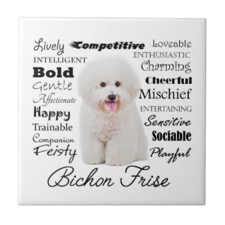 Bichon Traits Tile