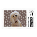 Bichon, various rates - 20 LARGE Postage Stamps