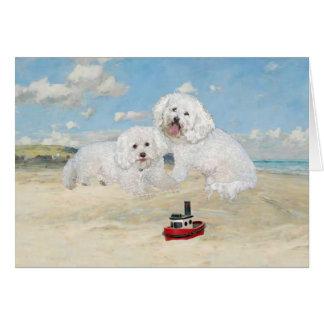 Bichons en la playa tarjeta de felicitación