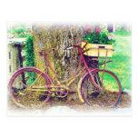 Bici antigua con la cesta de la flor tarjeta postal