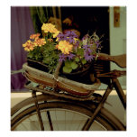 Bici y flores antiguas poster