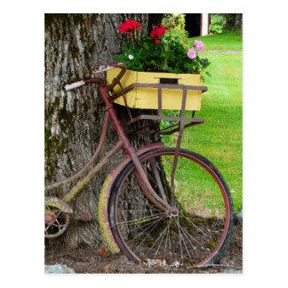 Bicicleta antigua vieja con la cesta de la flor tarjetas postales