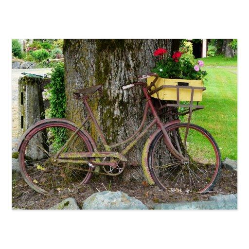 Bicicleta antigua vieja con la cesta de la flor postal
