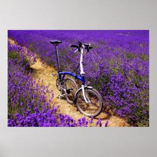 Bicicleta azul en un campo de la lavanda poster