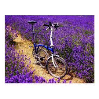 Bicicleta azul en un campo de la lavanda postales