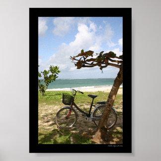 Bicicleta contra árbol póster