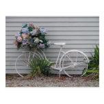 Bicicleta de la playa tarjetas postales