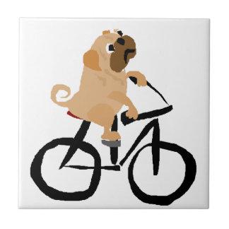 Bicicleta divertida del montar a caballo del perro azulejo cuadrado pequeño