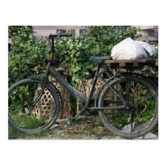 Bicicleta en el jardín de Taipei, Taiwán Tarjetas Postales