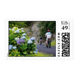 Bicicletas y hydrangeas sello