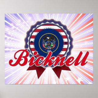 Bicknell, UT Print