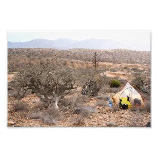 Bicycle Camping Baja California Desert Photo Art
