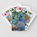 Bicycle Card Template - Customized Playing Cards