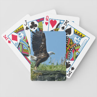 Bicycle Card Template - Customized Bicycle Poker Deck
