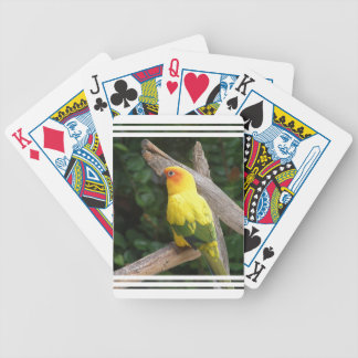 Bicycle Card Template - Customized Bicycle Poker Cards